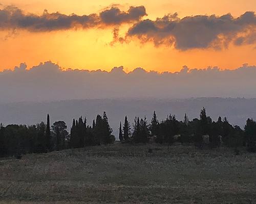 Good morning Tel Hazor!