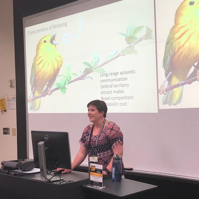 "Abigail Hayes, Audiology & Speech-Language Sciences: ""Accents Matter: Behavioral Responses to Local and Nonlocal Dialects in Four Colorado Wren Species"""