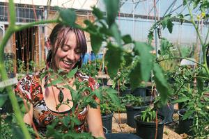 Students learned about greenhouse pests first-hand last summer while raising tomatoes for the local farmer's market. Photo by Kelsey Brunner