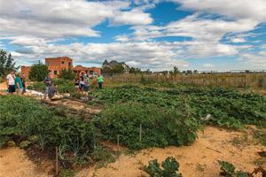 WiseAcres Farm after. Students met several times each week throughout the summer to plant, tend and harvest produce.