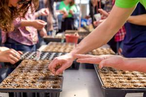 UNC students plant seeds during a Urban Farming course.
