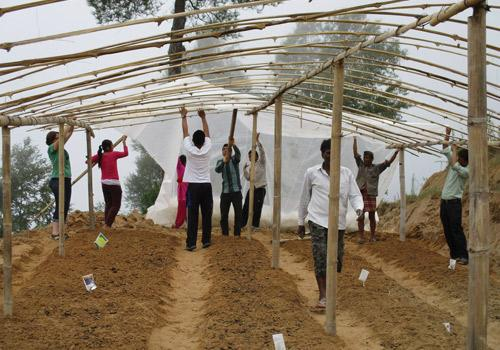 Cain and village youth in the Kumari district gathered at 5 a.m. daily to work on a community greenhouse.