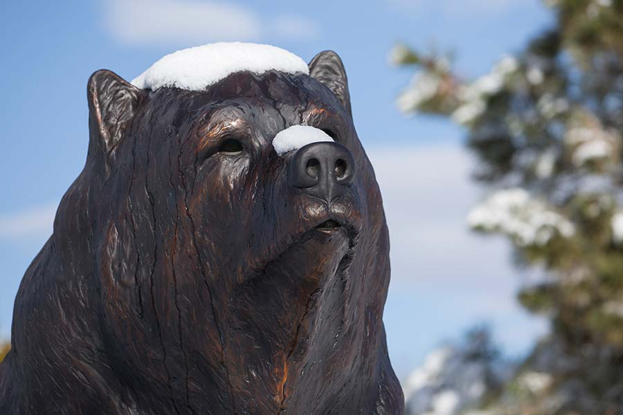 Bronze bear covered with snow