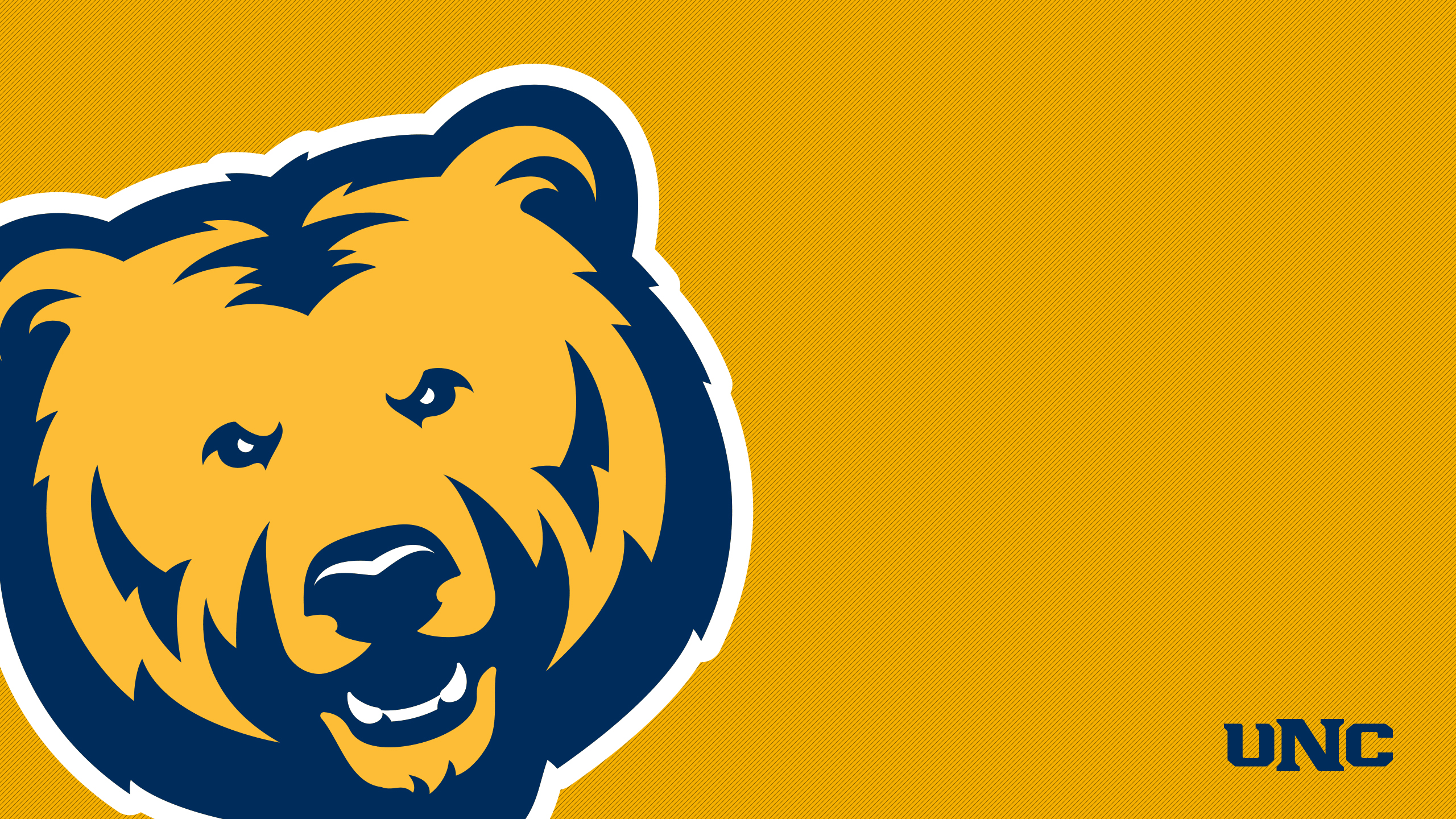 Bear Pride At The University Of Northern Colorado