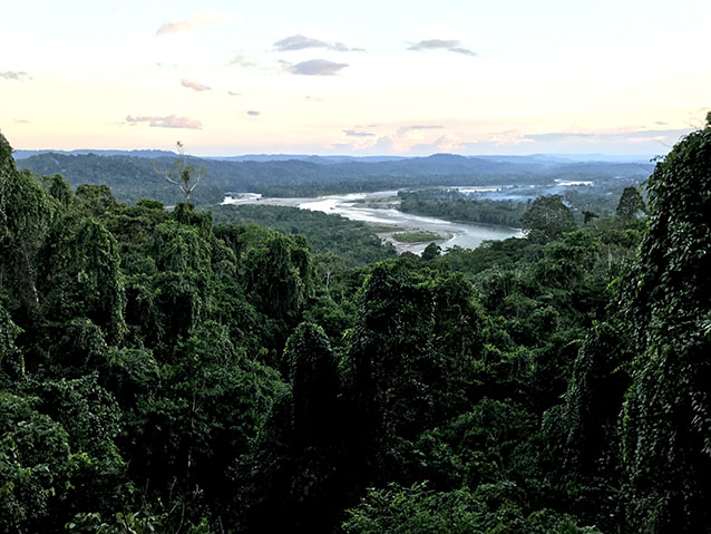 View of the Napo River