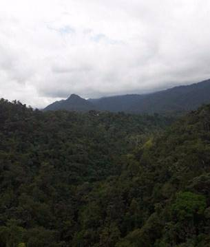 Mindo valley