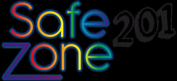 Safe Zone 201 training