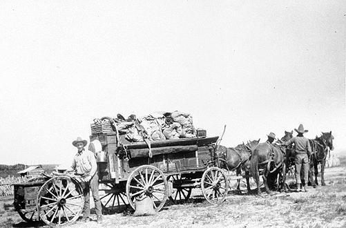 A Chuck Wagon