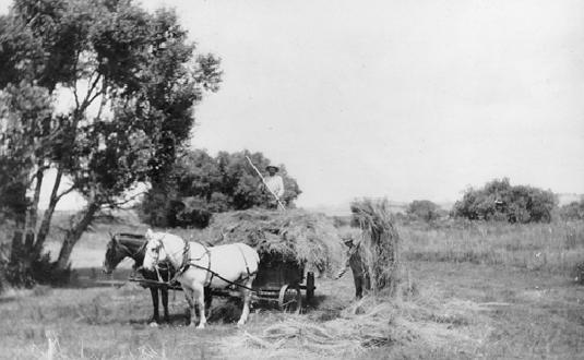 Loading Hay Wagon