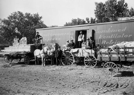 Loading Vegetables On a Boxcar