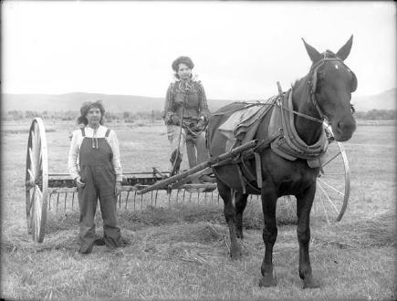 Women On a Hay Rake