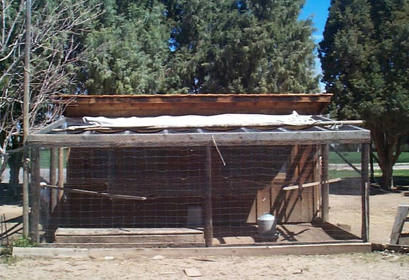 Poultry Coop