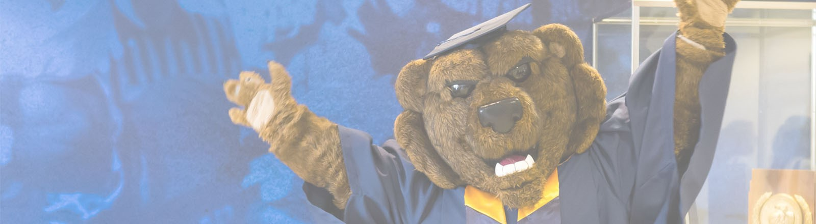Grad Recognition Banner
