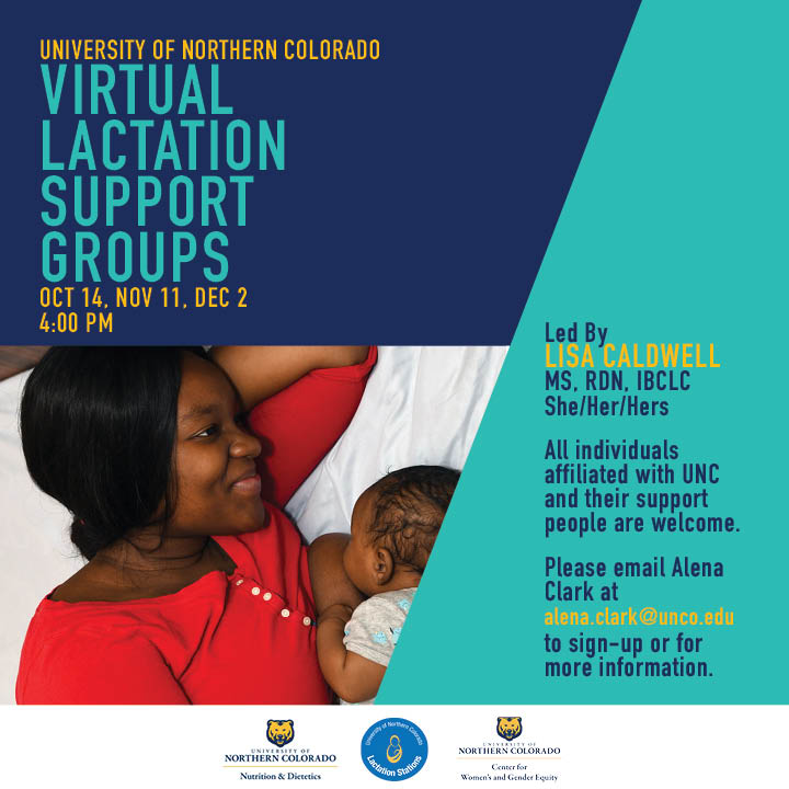 Virtual Lactation Peer Support Groups