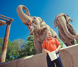 Brian Aucone with elephants