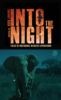book cover of Into the Night by Rick Adams