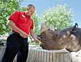 UNC alumnus feeding rhinocerous