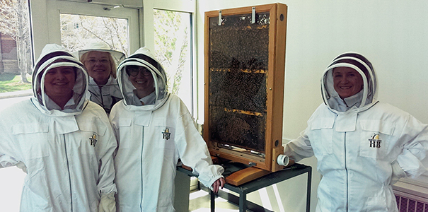 UNC members installing the beehive in Ross Hall