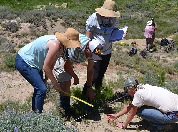 biology students in the field