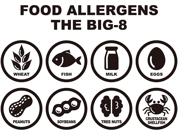 Food allergens big 8