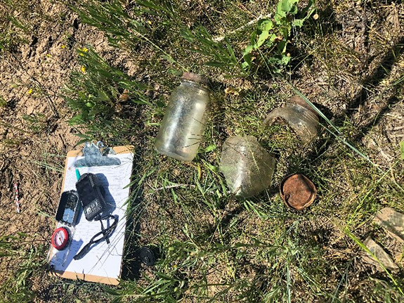 Jar shards found in the field