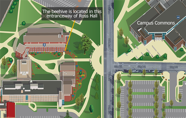 Map of where to find Ross Hall and the beehive