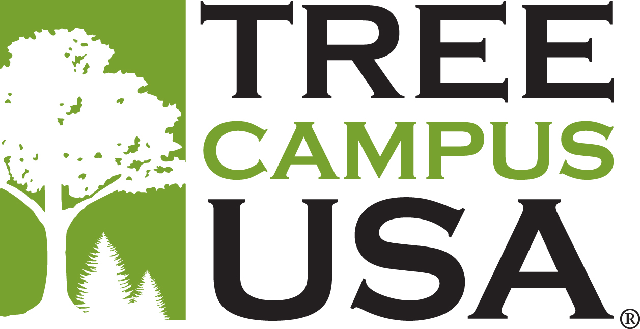 tree campus logo
