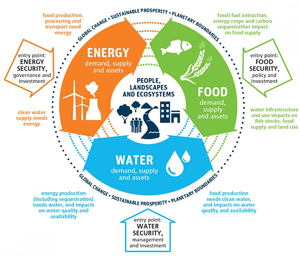 Food-water-energy concepts