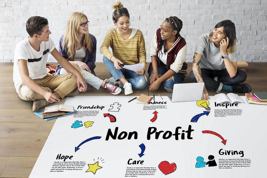 non-profit group project
