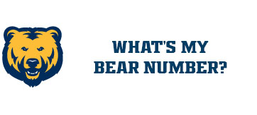 What's My Bear Number