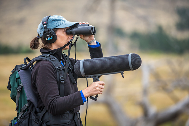 Lauryn Bendict, Ph.D. at Bobcat Ridge